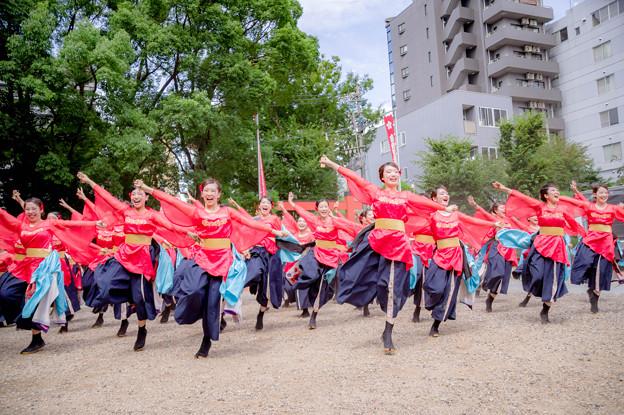 にっぽんど真ん中祭り2017 京炎 そでふれ!京小町
