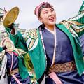 Photos: こいや祭り2017 岐阜聖徳学園大学 柳