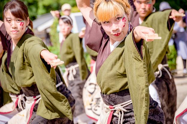 こいや祭り2017 有閑踊り子一座 飛舞人