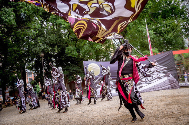 にっぽんど真ん中祭り2017 よさこい炎舞連『神陽~Sin~』