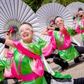 こいや祭り2017 京炎そでふれ!咲産華