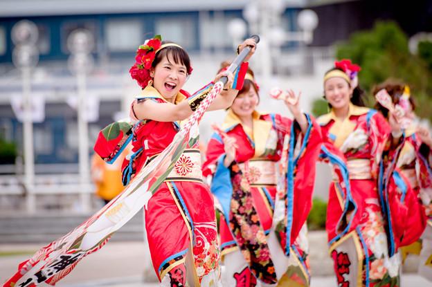 神戸アライブ2017 松山よさこい風舞人