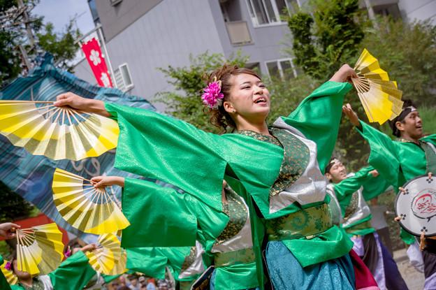 にっぽんど真ん中祭り2017 飃~FREEDOM~
