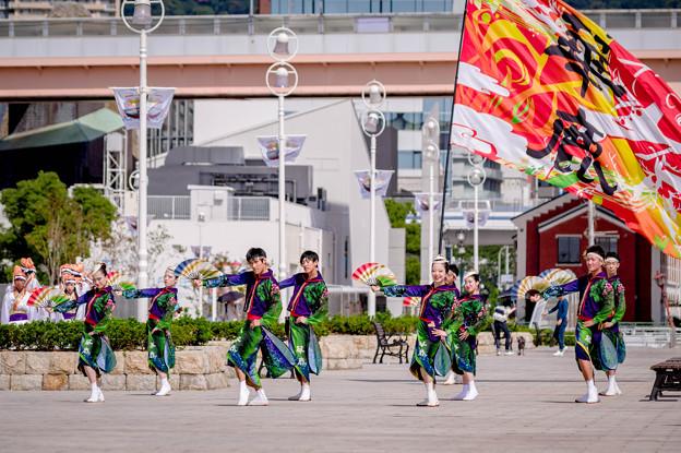 神戸アライブ2017 華鹿