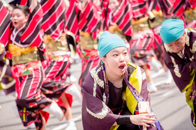 よさこい祭り2017 セントラルグループ踊り子隊