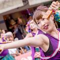 よさこい祭り2017 RINN