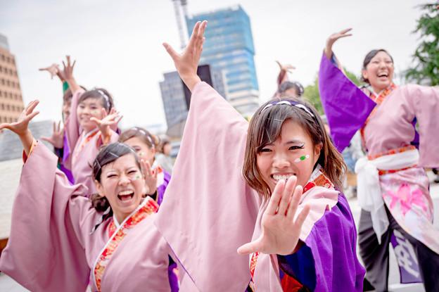 43こい祭り2017 岐阜大学よさこいサークル 騒屋