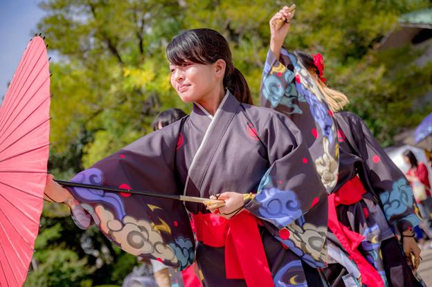 こいや祭り2017 京炎そでふれ!葵和