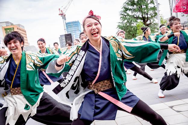 Photos: 43こい祭り2017 岐阜聖徳学園大学 柳