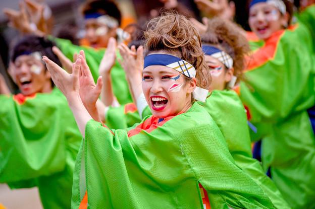 にっぽんど真ん中祭り2017 名古屋学生チーム『鯱』