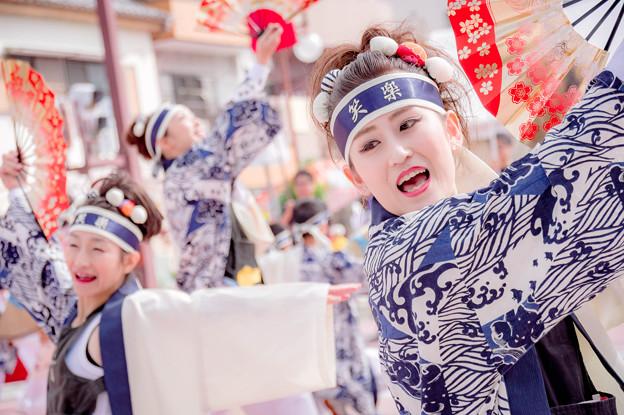 安濃津よさこい2017 笑楽 -eraku-