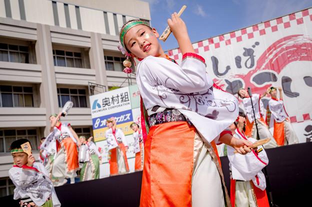 香芝よさこい2017 京都山城みつば家