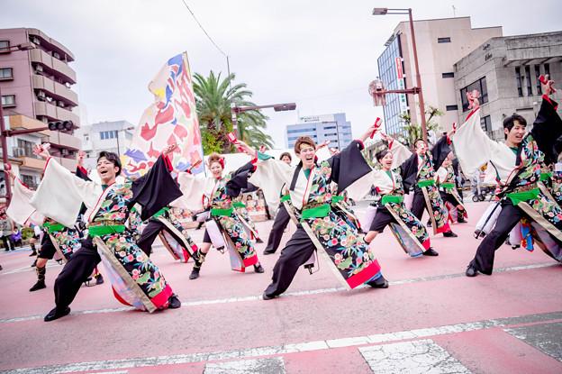 安濃津よさこい2017 江別まっことえぇ&北海道情報大学