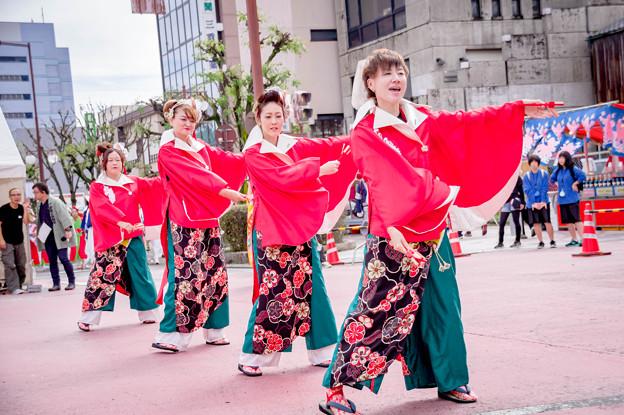 安濃津よさこい2017 よさこい踊り子隊「幻」-kagerou-