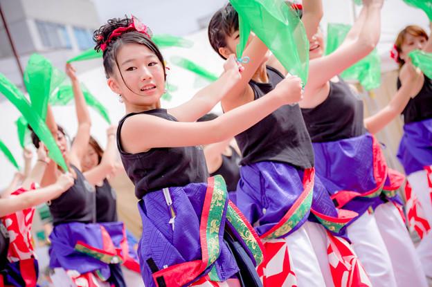 安濃津よさこい2017 藤水バリバリ踊っちゃオ~