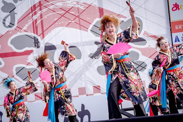 香芝よさこい2017 桐ヶ丘どっこいしょ