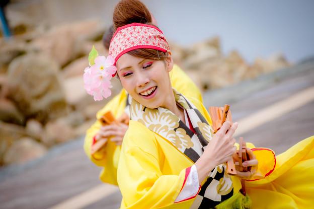 ゑぇじゃないか祭り2017 憂喜世桜