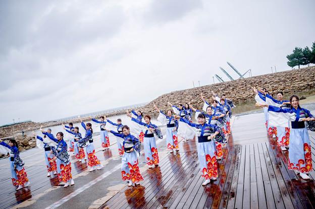 ゑぇじゃないか祭り2017 逢坂夢帆