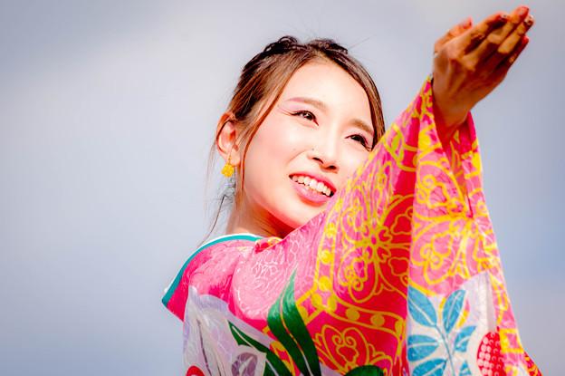 香芝よさこい2017 奈良市役所チーム八重櫻