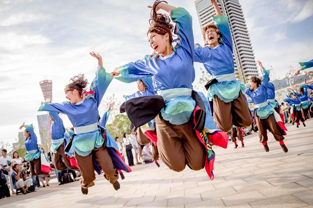 神戸アライブ2017 神戸学生よさこいチーム湊