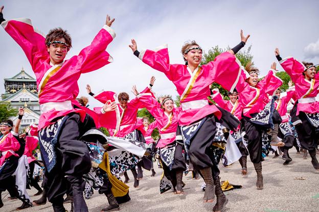 こいや祭り2017 京炎そでふれ!輪舞曲