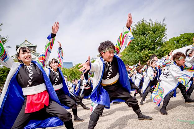"""こいや祭り2017 大阪大学お祭りダンスサークル""""祭楽人"""""""