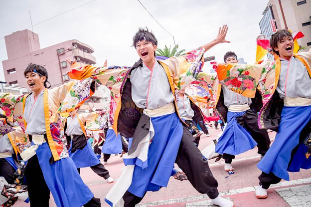 """安濃津よさこい2017 名古屋大学""""快踊乱舞"""""""