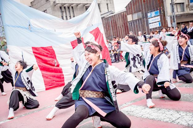 安濃津よさこい2017 岐阜聖徳学園大学柳