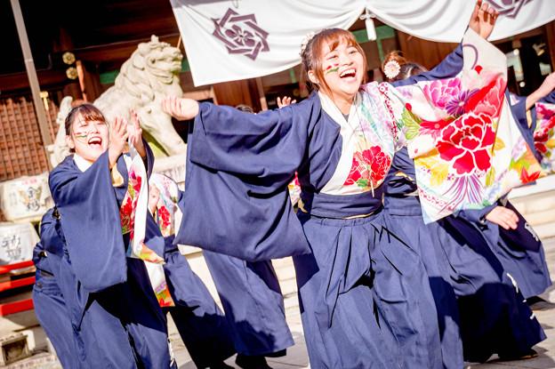 龍馬よさこい2017 滋賀大学 よさこいサークル 椛
