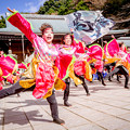 Photos: 龍馬よさこい2017 愛知淑徳大学よさこい探究会「鳴踊」