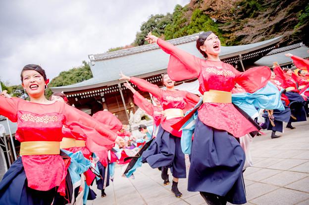 龍馬よさこい2017 京炎 そでふれ!京小町