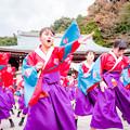 龍馬よさこい2017 京炎 そでふれ!花風姿