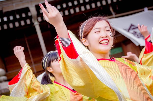 龍馬よさこい2017 和歌山大学よさこいサークル「和歌乱」
