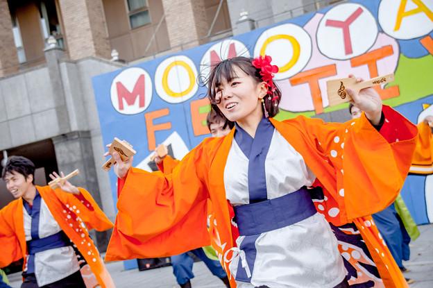 桃食べな祭2017 桃山学院大学よさこい連真輝OBチーム