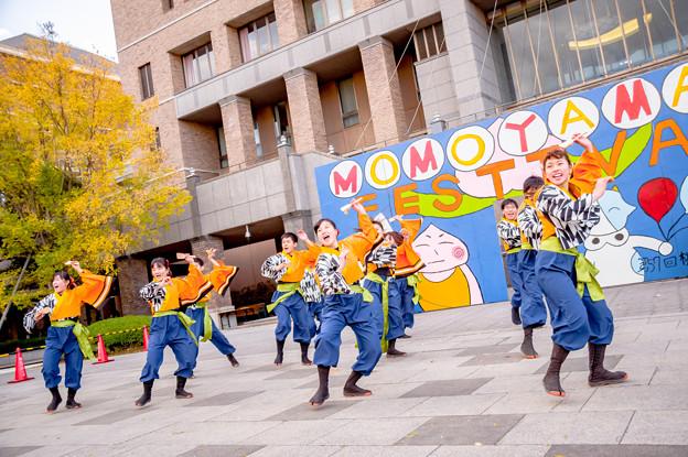 桃食べな祭2017 桃山学院大学よさこい連真輝