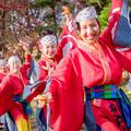 写真: おどるんや秋まつり2017 和歌山MOVE