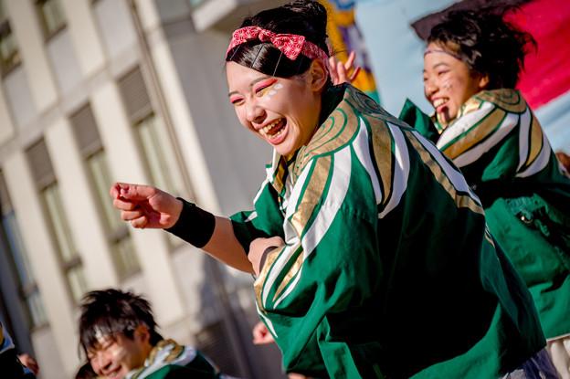 岐聖祭2017 岐阜聖徳学園大学 柳