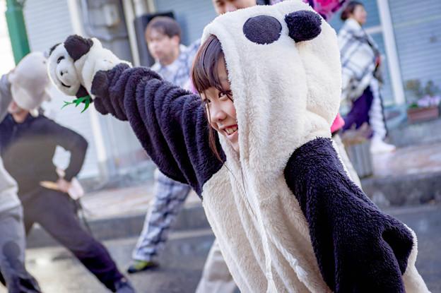 バサラカーニバル2017 夢源風人