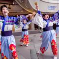 みなこい祭 in OCAT 2018 逢坂夢帆