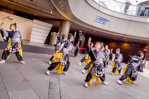 みなこい祭 in OCAT 2018 ピンクチャイルド