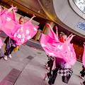 Photos: みなこい祭 in OCAT 2018 ピンクチャイルド
