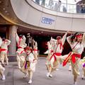 Photos: みなこい祭 in OCAT 2018 紀道