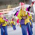 Photos: ドリーム夜さ来い祭り2017 踊る BAKA!Tokyo