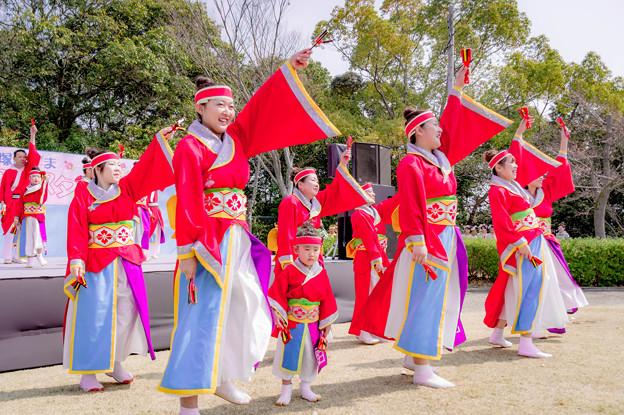 貝塚みずま春フェスタ2018 大阪泉州よさこい連 彩