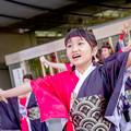 Photos: ドリーム夜さ来い祭り2017 粋