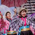 どまつり夜桜in岡崎2018 らんラン東海