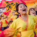 京都さくらよさこい2018 京炎そでふれ!彩京前線