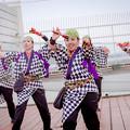 Photos: 踊っこまつり2018 合点