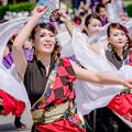 YOSAKOIソーラン日本海彦根三十五万石会場2018 渡衆七番隊扇傘