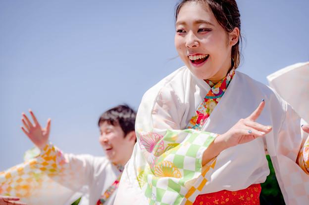 堺よさこいかえる祭り2018 舞乱~MAIRAN~